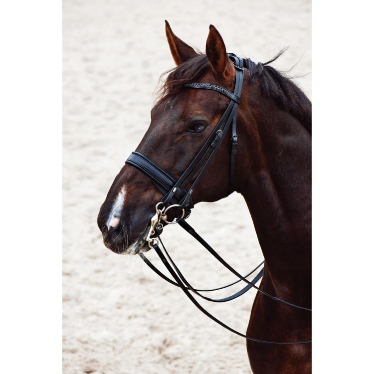 Catago Croco Double Full Bridle