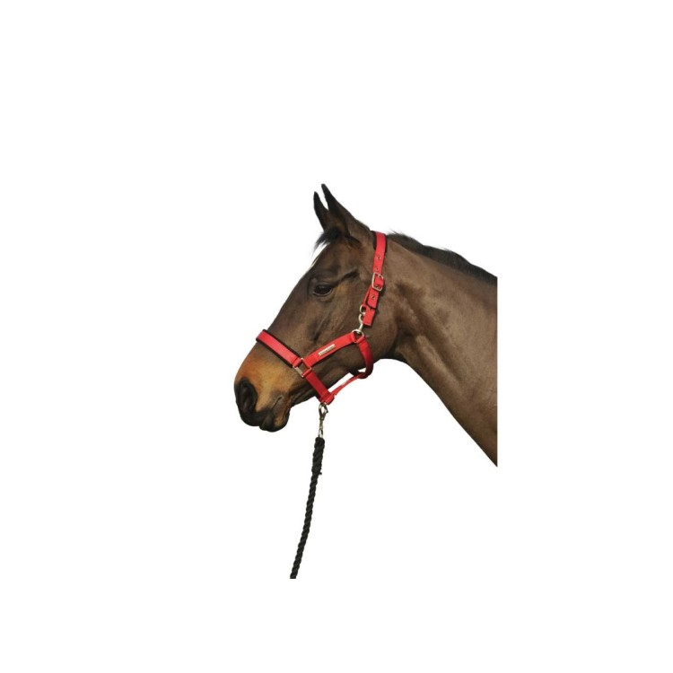 Cottage Craft Turnout Safe Headcollar