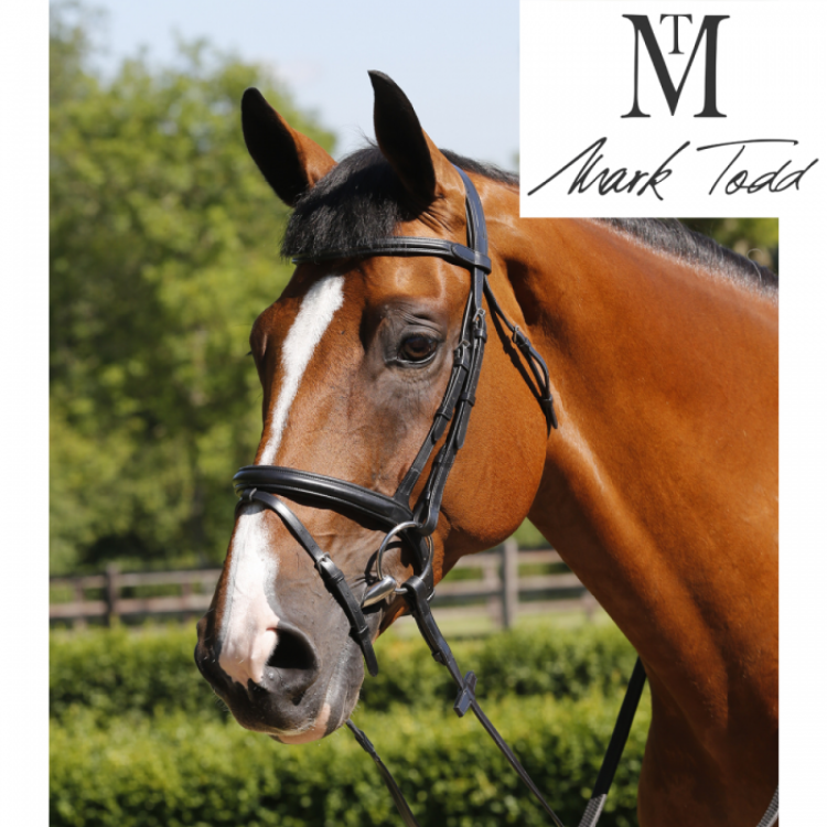 Mark Todd Flash Bridle