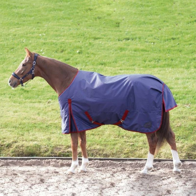 Masta Basics 200G Turnout Rug Standard Neck